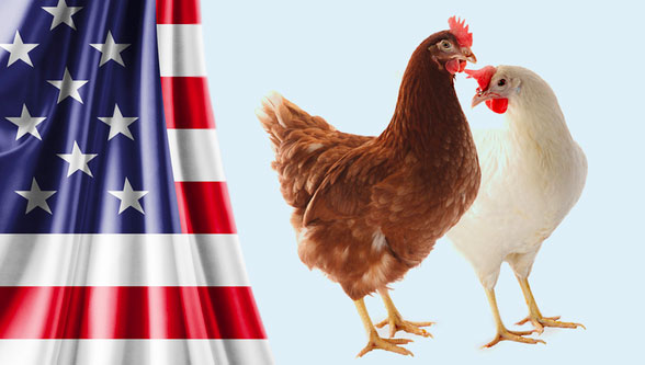 Merrill's Poultry Farm Inc. joined the H&N Distribution Network as new Distributor in Western U.S.A.